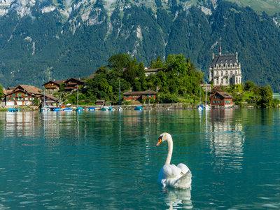 办理瑞士签证需要几天?